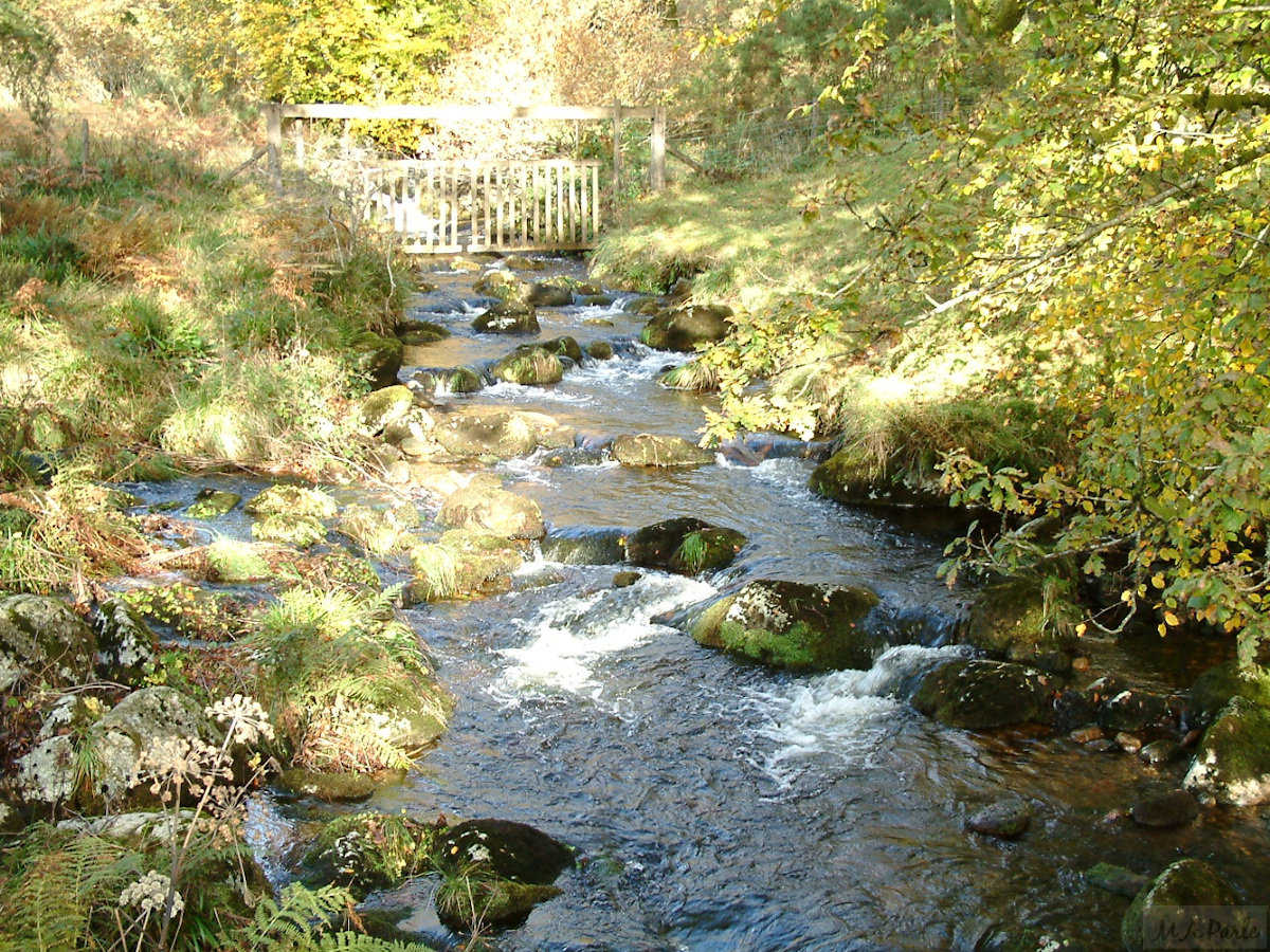 River Meavy at Norsworthy Bridge