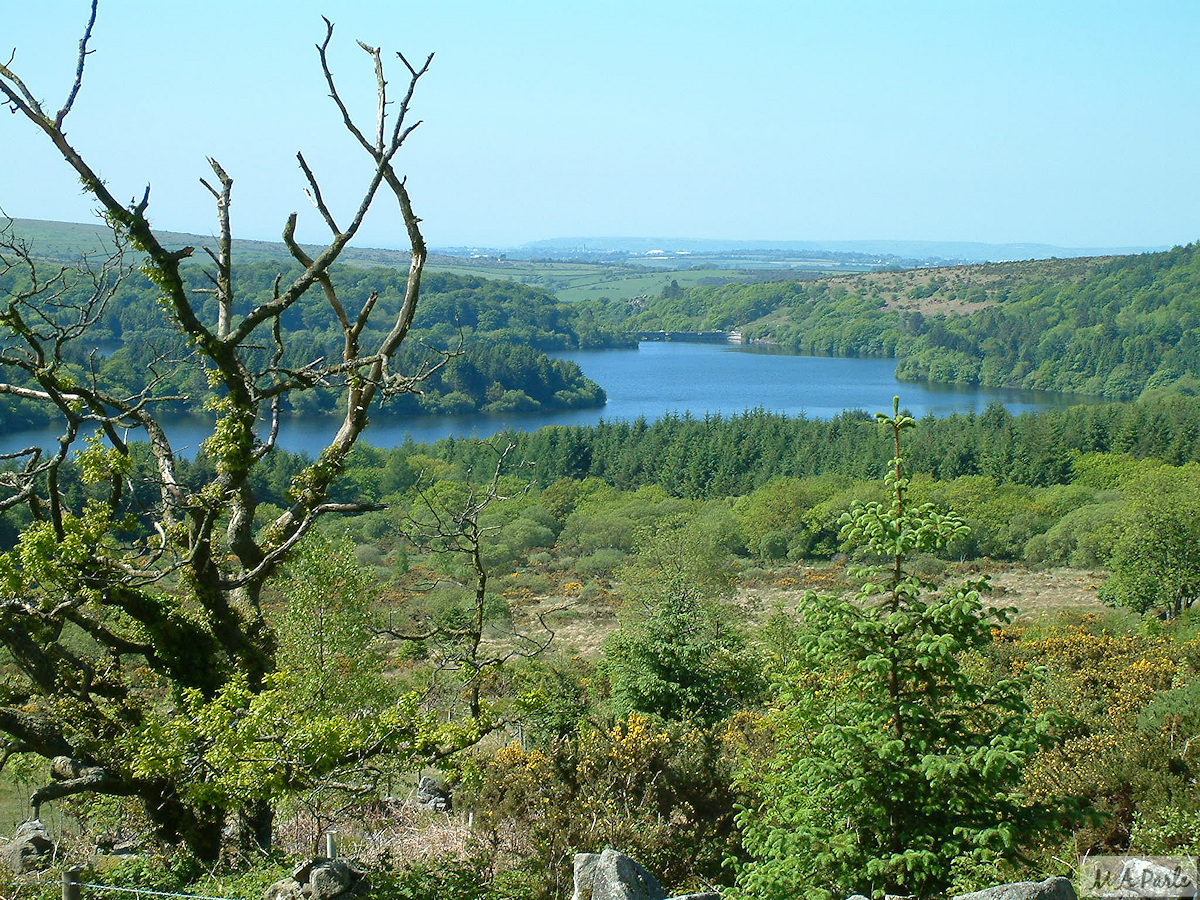 Burrator Reservoir from below Leather Tor