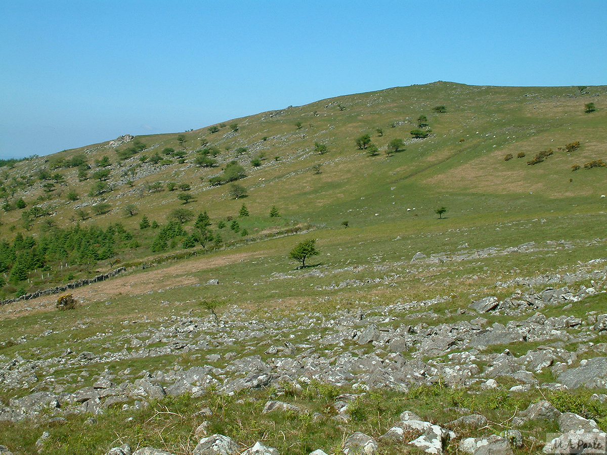 The south facing slope of Peek Hill