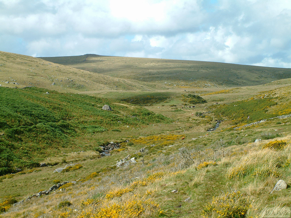 East Dart valley with Sittaford Tor way beyond