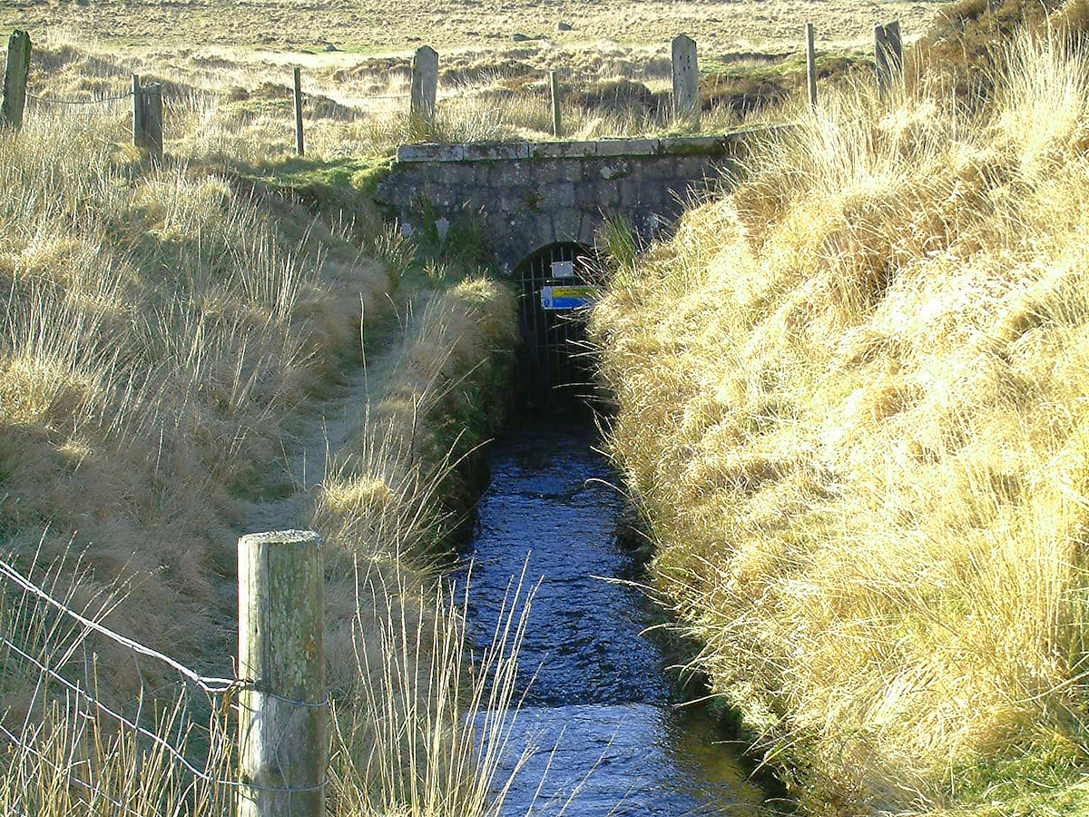 Devonport Leat flows into a tunnel below Nun's Cross Farm