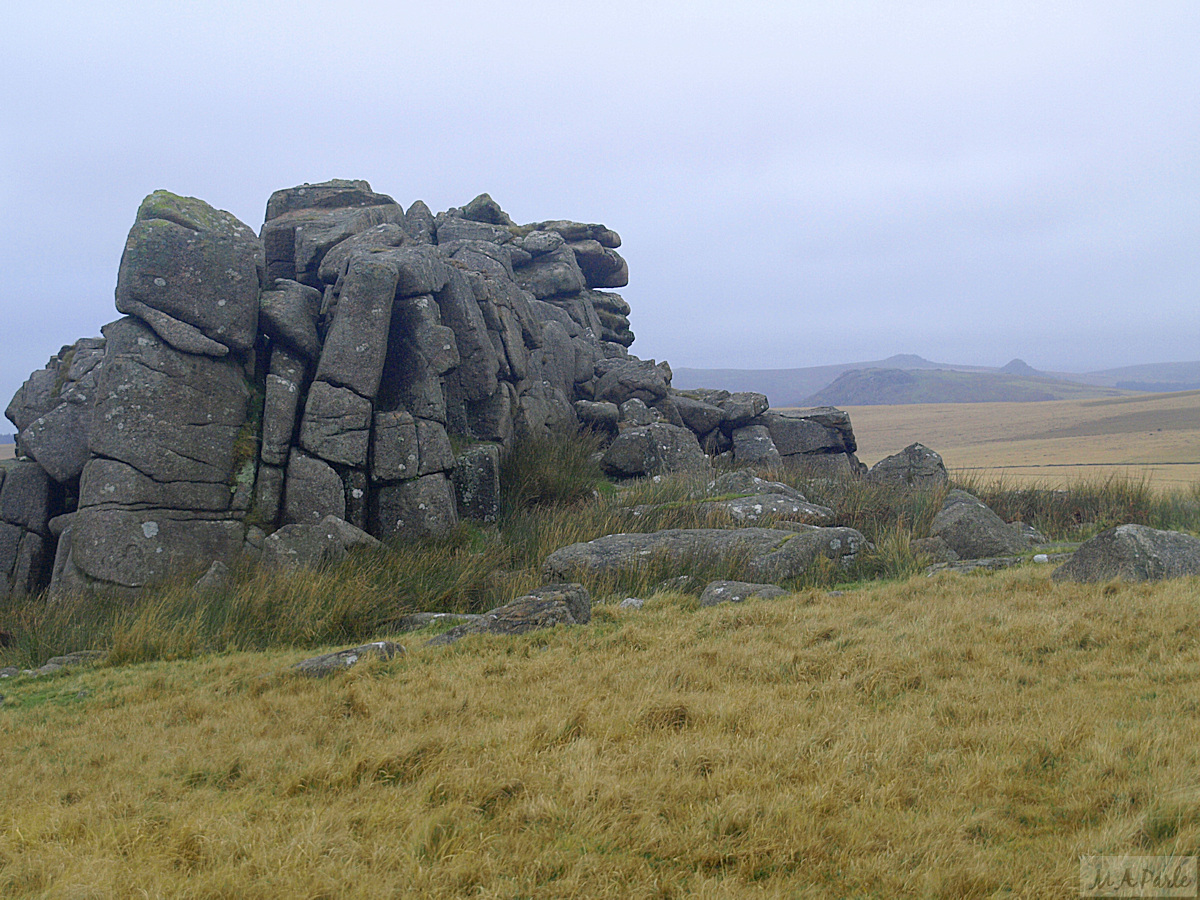 View north from Little Trowlesworthy Tor