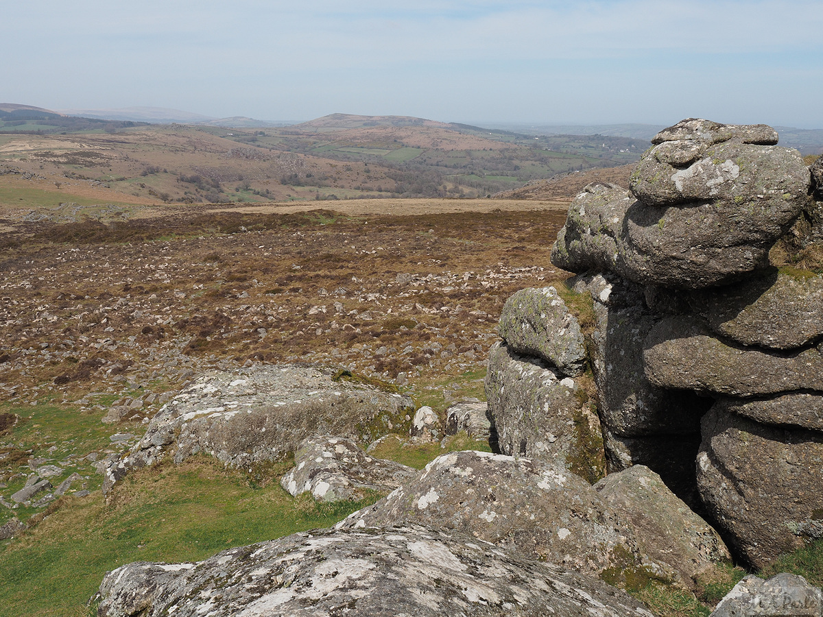 View north from Haytor